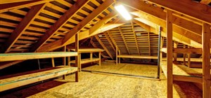 Making Your Roof Unappealing to Winter Attic Inhabitants