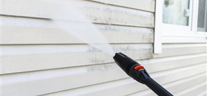 Why Hire a Professional to Do Your House Washing