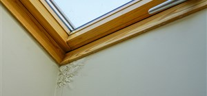 Spring Moisture Damage: When Will My Home Need Replacements?