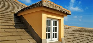 Roofing 101: How to Spot 5 Common Types of Shingle Damage