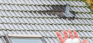 Common Summer Hazards for Your Roof