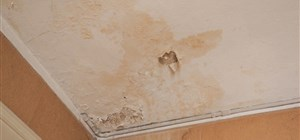 What's Causing Moisture Damage in Your Home?