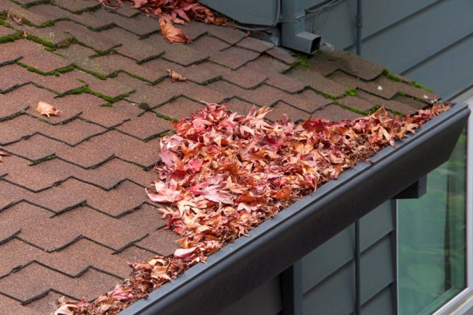 What Clogged Gutters can do to Your Home